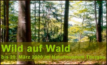 Naturmuseum