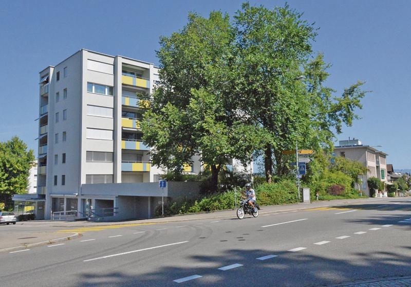 Zweimal Kehlhof im Langdorf