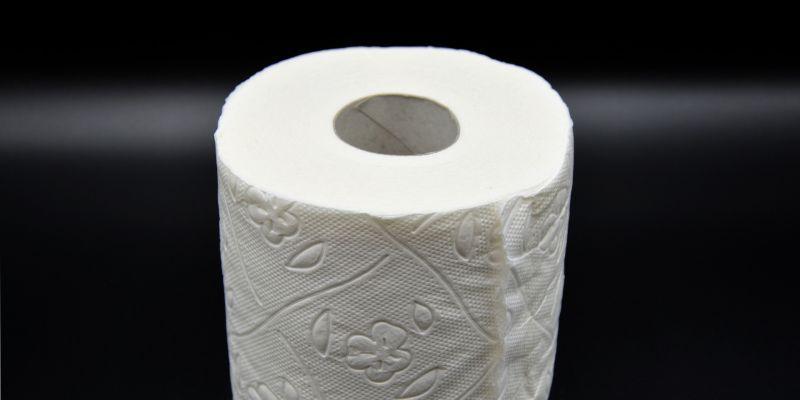 Die Krux mit dem WC-Papier